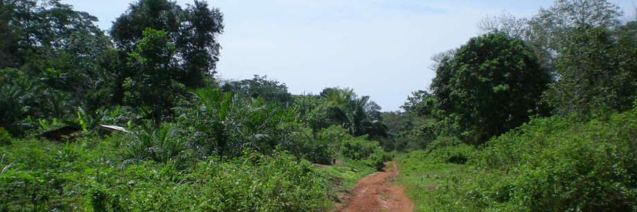 República de Camerún: Provincia del Sur